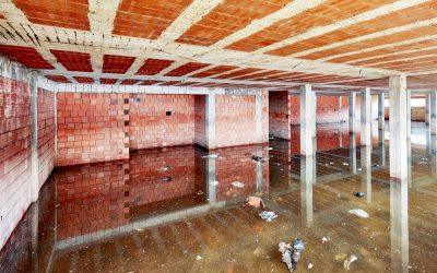 Why You Need To Hire A Profession In Case Of A Basement Flood