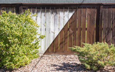 How to Wash and Stain your Yard's Wood Fence the First Time